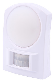 Light with Motion Detector BL 100